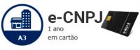 E-CNPJ - A3 de 1 Ano em cartão